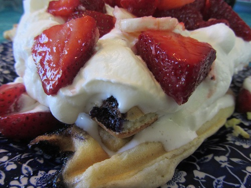 The Holidays and Observances Recipe of the Day for February 19 is a Healthy Waffle Recipe from Kerry, of Healthy Diet Habits.