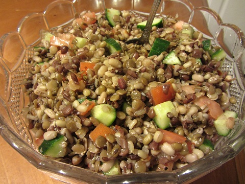 Healthy Sprouted Bean Salad Recipe from Healthy Diet Habits