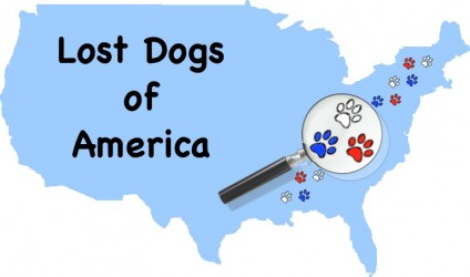 National Lost Dog Awareness Day - info. from Holidays and Observances