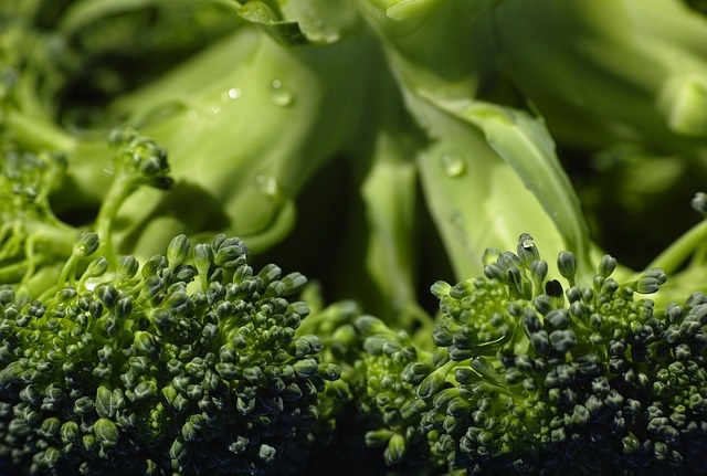 The month of June is National Fresh Fruit and Vegetable Month!  Our Healthy Diet Habits tip of the day is some Broccoli Tips from Kerry at Healthy Diet Habits!