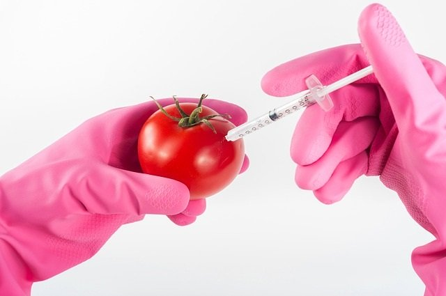 Most of you eat genetically modified food if you eat processed foods or non organic forms of some vegetables.